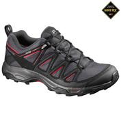 Mens Wentwood GTX Hiking Shoes (Asphalt/Black/Radiant)