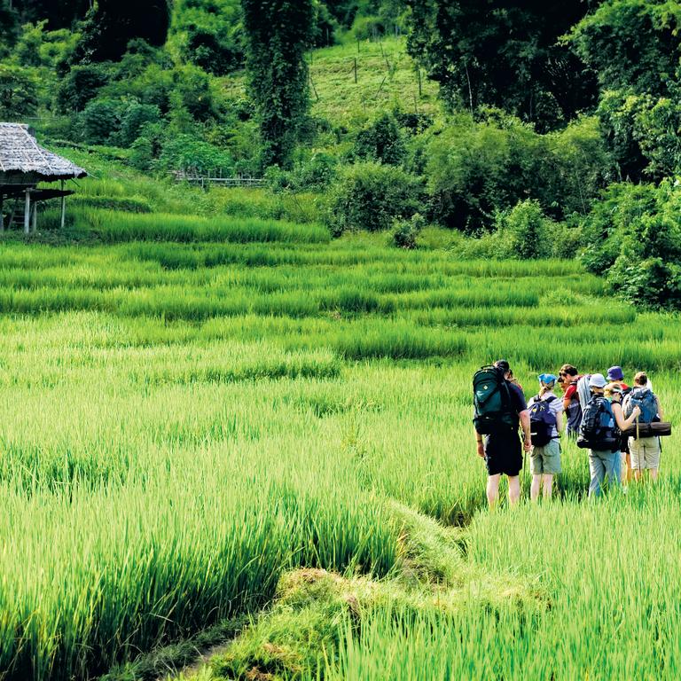 Explore Northern Thailand