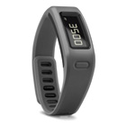 Garmin Vivofit Band (Slate)
